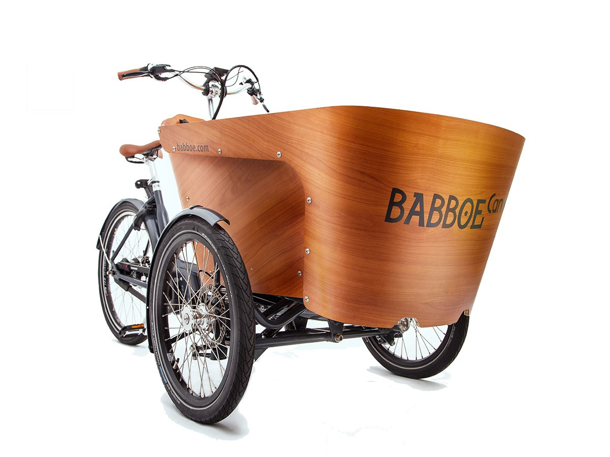 Electric cargo tricycle Babboe Carve Mountain